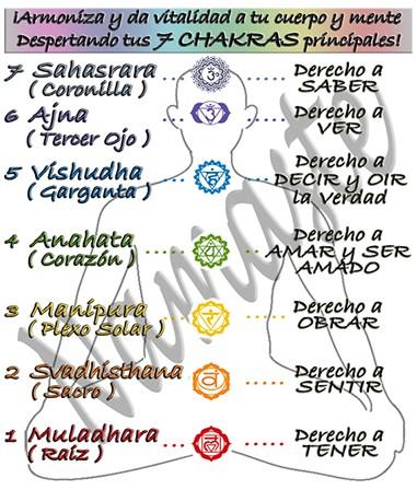 Chakras principales